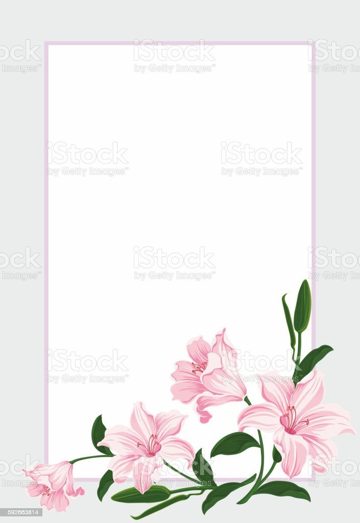 Beautiful Pastel Floral Frame Greeting Postcard Border With Lily ...