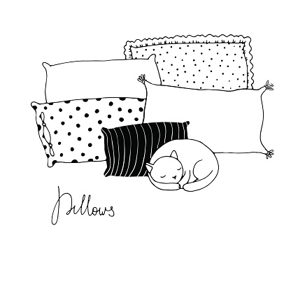 Beautiful pillows and cute cat on a white background.