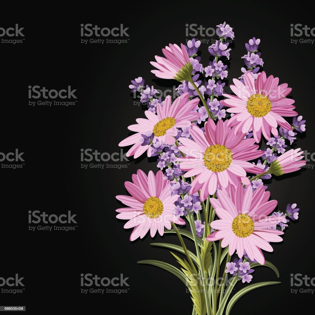 Beautiful Pink Daisies And Lavender Flowers Stock Vector Art More