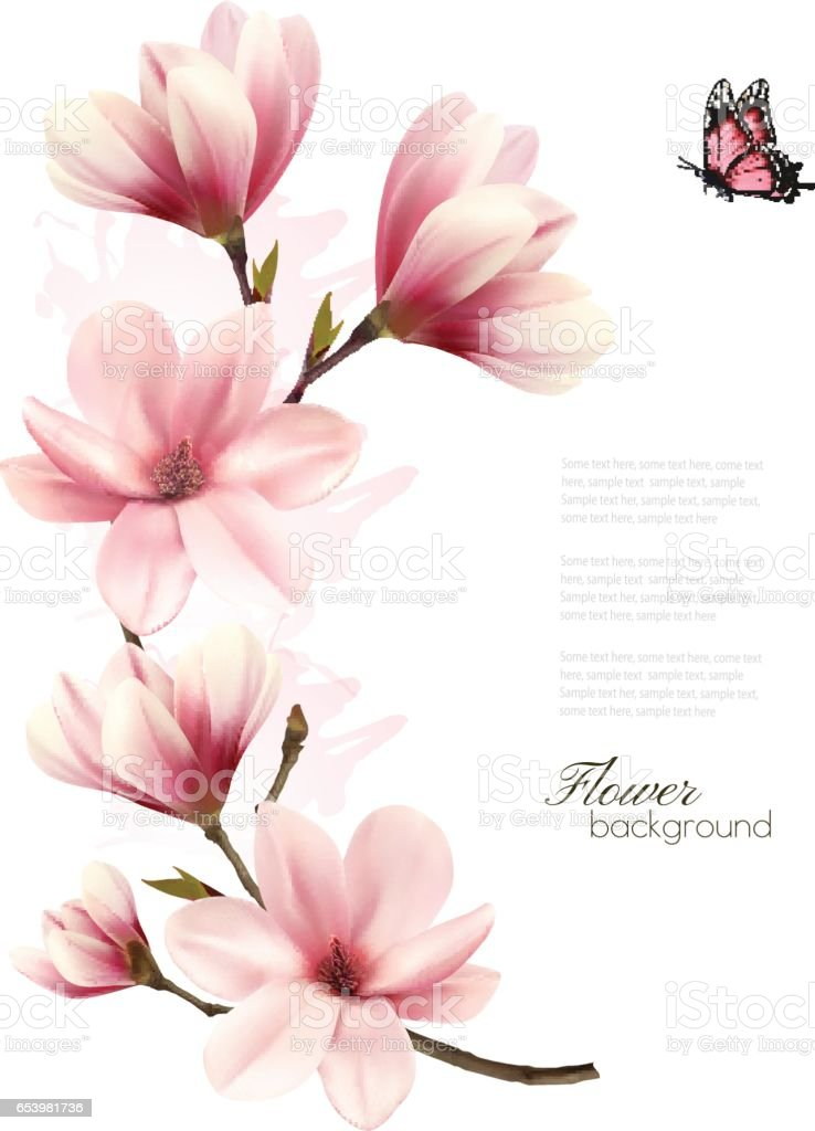Beautiful pink magnolia background. Vector. vector art illustration