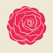 beautiful pink rose in hand-drawn graphic style in vintage colors