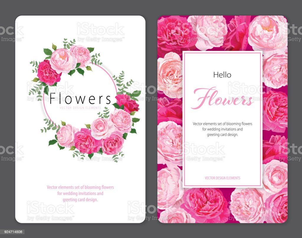 Beautiful Pink Roses Flower Background Template Stock Vector Art