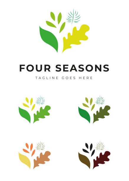 Beautiful plant tree garden park logo in four colors four seasons change identity vector art illustration