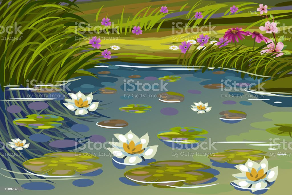 Beautiful Pond with Water Lilies vector art illustration