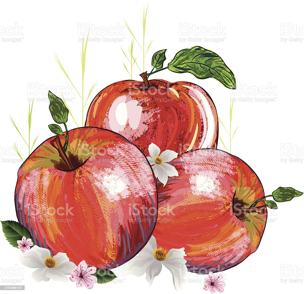 Beautiful Red Apple royalty-free beautiful red apple stock vector art & more images of apple - fruit