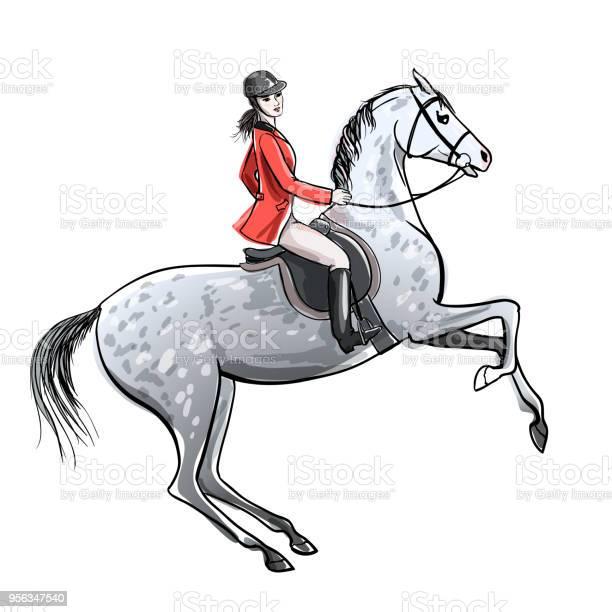 Beautiful rider and dapple grey horse on white horseman girl in red vector id956347540?b=1&k=6&m=956347540&s=612x612&h=xf3v9olv9bwrt4gz6p aozq78gxtu3b6yfdujfejg9a=