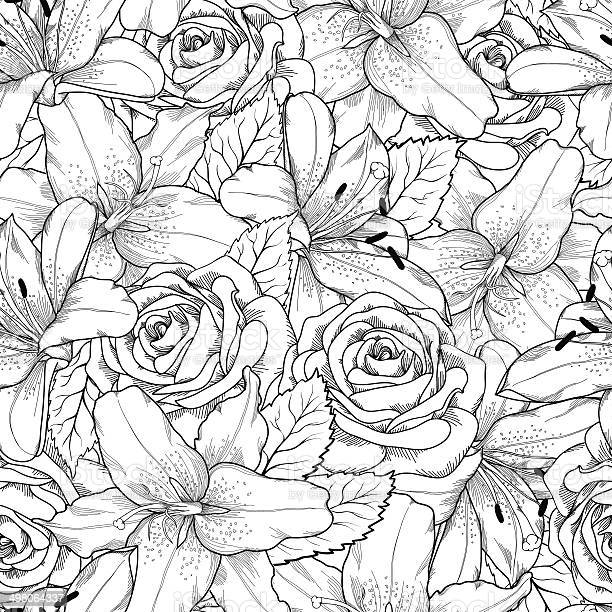 Beautiful seamless background with black and white lily and roses vector id498064337?b=1&k=6&m=498064337&s=612x612&h=uy6td1fpsqlrnrjtnr5s5d48h juokog475yn9oct3o=