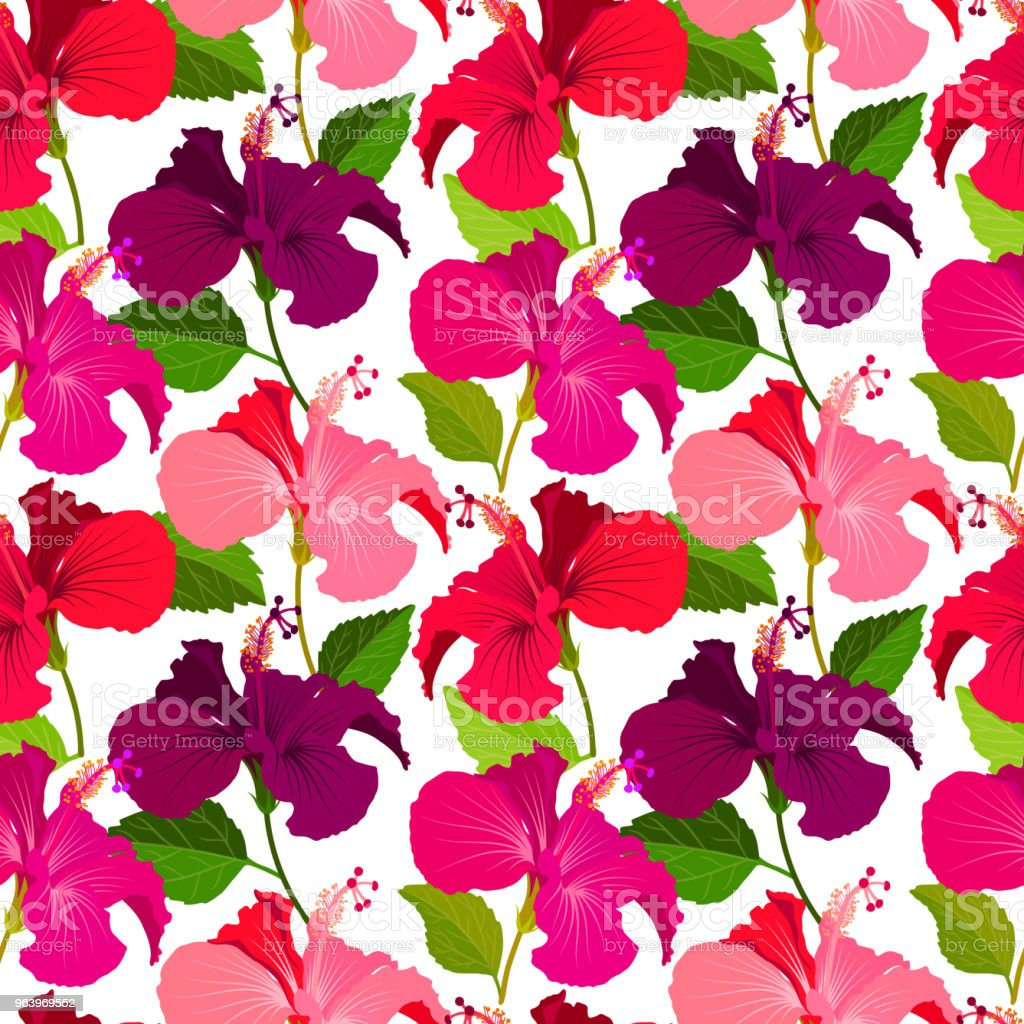 Beautiful seamless floral jungle pattern background. Tropical flowers bright color background. Hibiscus flower realistic vector repeatable design - Royalty-free Backgrounds stock vector