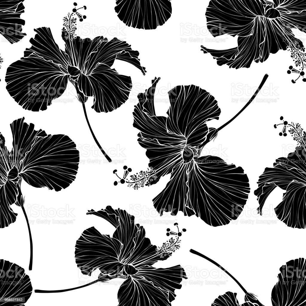 Beautiful Seamless Floral Pattern Hibiscus Flowers Background