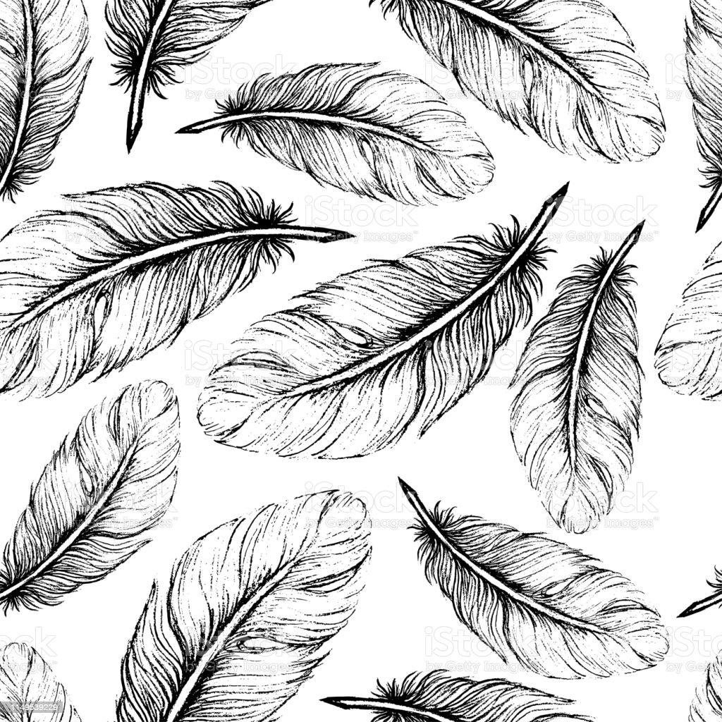 Beautiful seamless hand drawn feather pattern vector art