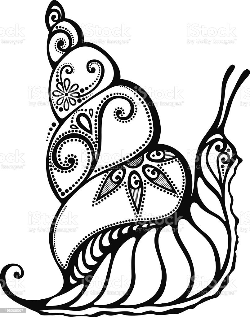 beautiful snail exotic insect stock vector art 498068567 istock