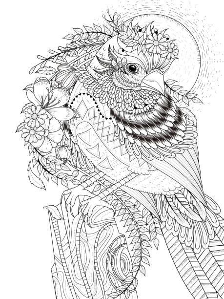 beautiful sparrow adult coloring page vector art illustration