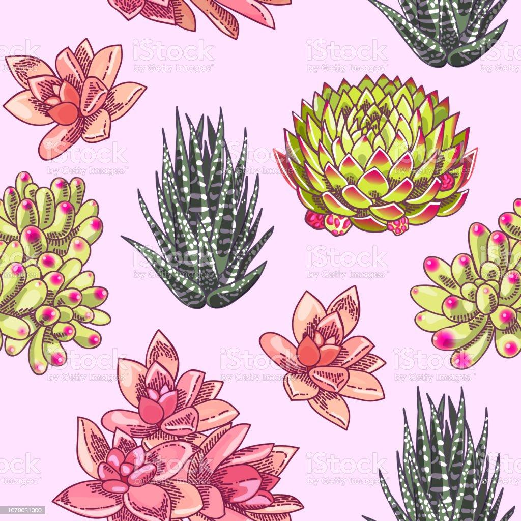 美しい多肉植物装飾デザイン花のシームレスなパターン植物のイラスト