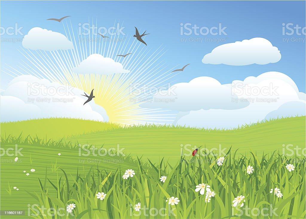 Beautiful sun day / Vector illustration royalty-free stock vector art