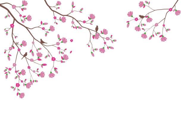 illustrazioni stock, clip art, cartoni animati e icone di tendenza di beautiful tree branch with birds silhouette background for wallpaper sticker - farfalla ramo