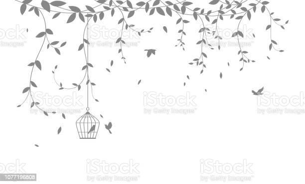 Beautiful tree branch with birds silhouette background for wallpaper vector id1077196808?b=1&k=6&m=1077196808&s=612x612&h=lolsbsyqe8hqa2cdnhbb2visucu8gpo4o3n18glgagm=