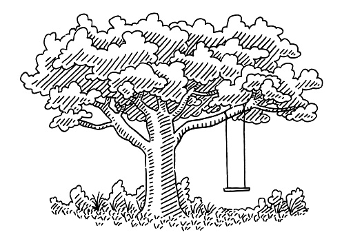 Beautiful Tree With A Swing Drawing