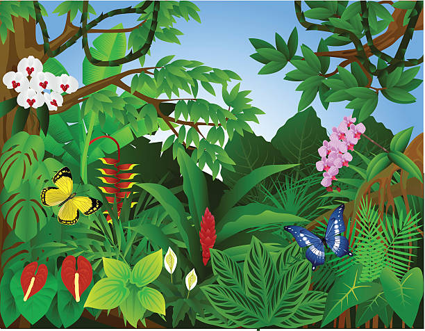bildbanksillustrationer, clip art samt tecknat material och ikoner med beautiful tropical forest - blomdel