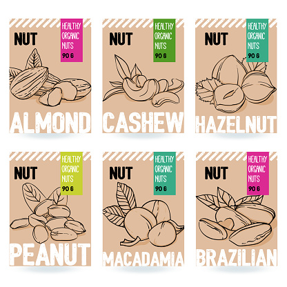 Beautiful vector hand drawn organic nut card set.Almond, cashew, hazelnut, peanut, macadamia, brazilian nut.