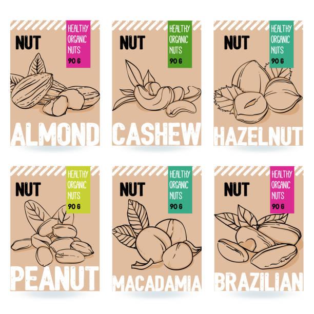 아름 다운 벡터 손으로 그린 유기 너트 카드 세트입니다.아몬드, 캐슈, 헤이즐넛, 땅콩, 마 카 다 미아, 브라질 너트. - nuts stock illustrations