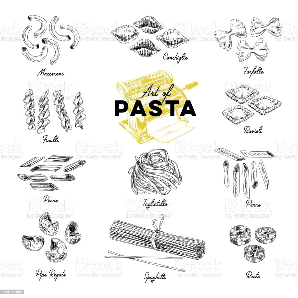 Beautiful vector hand drawn pasta Illustration. Beautiful vector hand drawn pasta Illustrations. Detailed retro style images. Vintage sketch elements for labels, packaging and cards design. Modern background. Cannelloni stock vector