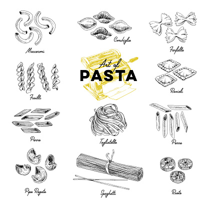 Beautiful Vector Hand Drawn Pasta Illustration Stock Illustration - Download Image Now