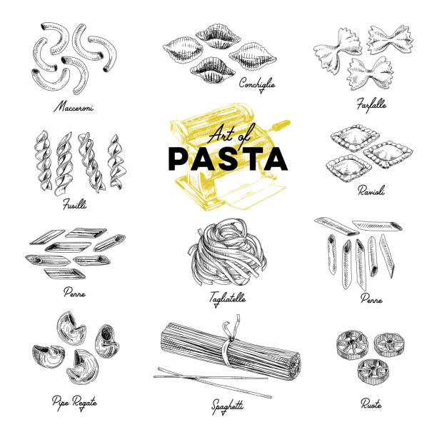 Beautiful vector hand drawn pasta Illustration. Beautiful vector hand drawn pasta Illustrations. Detailed retro style images. Vintage sketch elements for labels, packaging and cards design. Modern background. tortellini stock illustrations