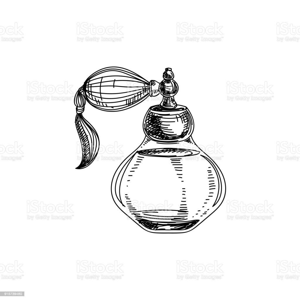 Vector linda mão extraídas frasco de perfume vintage ilustração. - ilustração de arte em vetor
