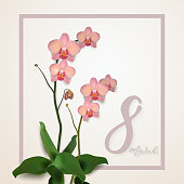 Beautiful vector illustration on 8 March, International Women's Day, spring, flowers, orchids. Decorative Template for Invitation, Flyer, Banner