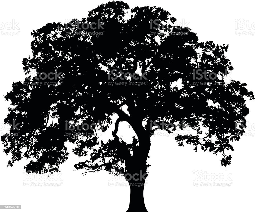 Beautiful vector tree silhouette icon for websites