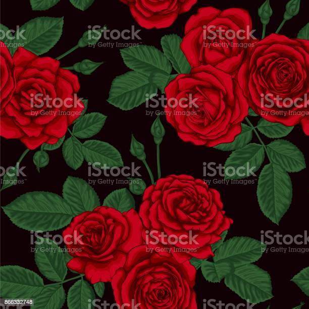 Beautiful vintage seamless pattern with bouquets of roses and leaves vector id866332748?b=1&k=6&m=866332748&s=612x612&h=ngje8ppqy43gn3shcy53bu3ujqlvcjzqv6tp ezo7w0=
