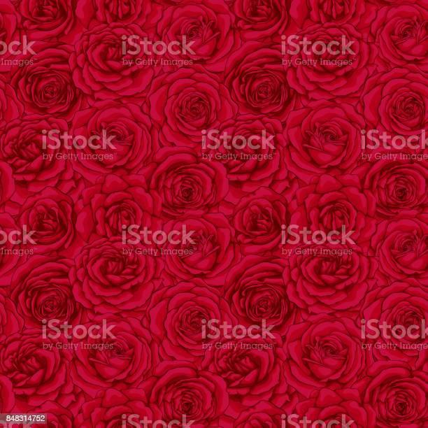 Beautiful vintage seamless pattern with red roses buds design card vector id848314752?b=1&k=6&m=848314752&s=612x612&h=z y yc0itscdt axlqtkr7om6upjhwtnpngidkm2upy=