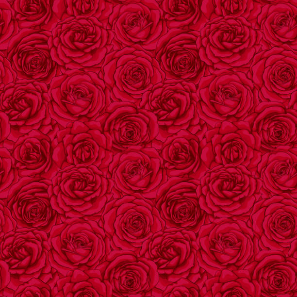 illustrazioni stock, clip art, cartoni animati e icone di tendenza di bellissimo motivo vintage senza cuciture con boccioli di rose rosse. biglietto d'auguri di design e invito del matrimonio, compleanno, san valentino, festa della mamma e altre festività. - rosa rossa