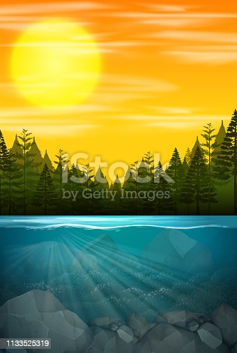 Beautiful water forest scene illustration