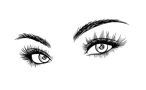 美麗的女人眼睫毛擴展素描 - 睫毛 幅插畫檔、美工圖案、卡通及圖標