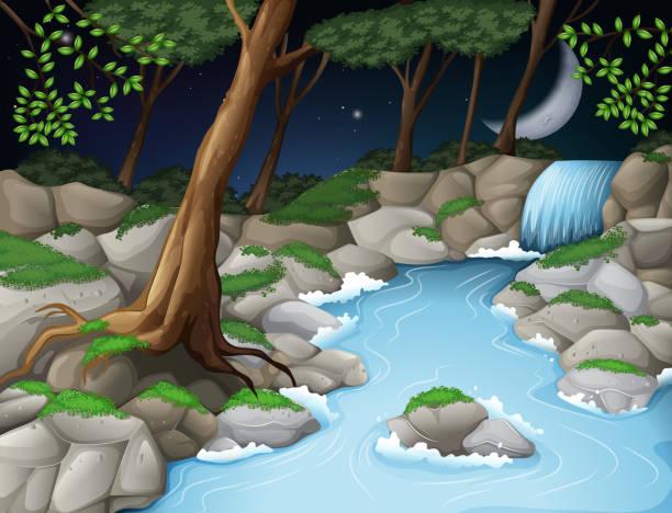beautiful wood scene at night - moss stock illustrations