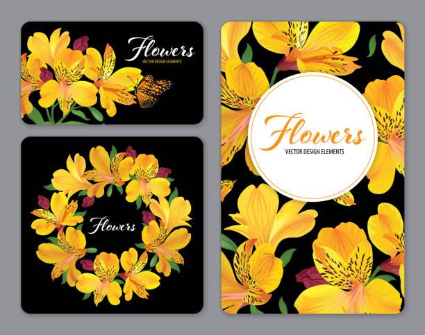 schöne gelbe alstroemeria lilie blumen auf schwarzem hintergrundvorlage. - inkalilie stock-grafiken, -clipart, -cartoons und -symbole