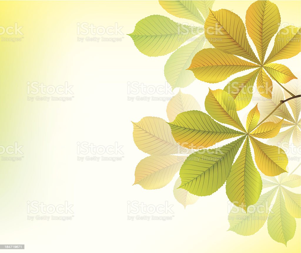 Beautiful yellow background with chestnut leaves royalty-free stock vector art