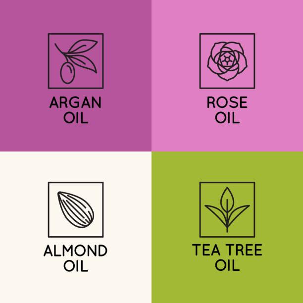 beauty und kosmetik öle - pflanzenhaar stock-grafiken, -clipart, -cartoons und -symbole