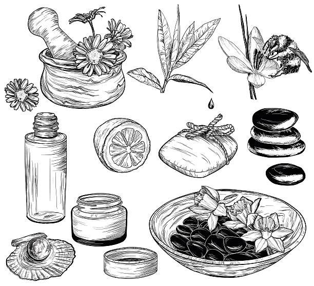 schönheit und gesundheit pflege skizze, bio-produkte - naturseife stock-grafiken, -clipart, -cartoons und -symbole