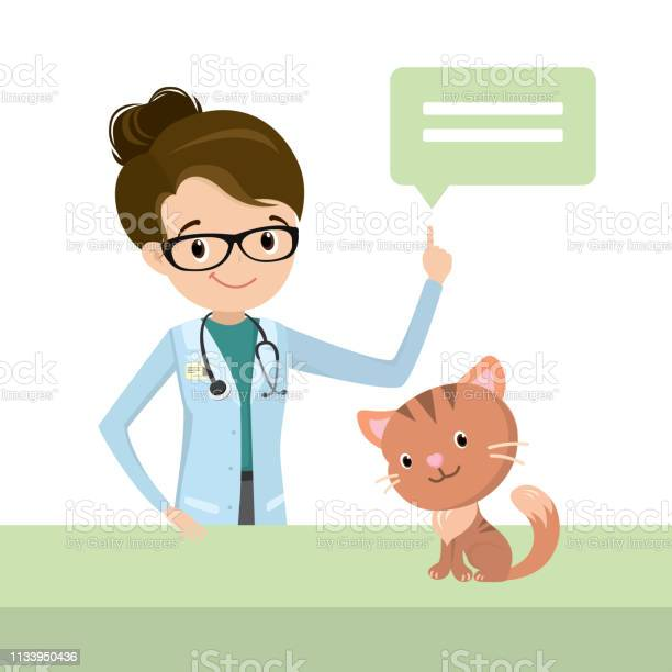 Beauty female vet doctor with cat vector id1133950436?b=1&k=6&m=1133950436&s=612x612&h=vyk09hjpadkpoewwdhmsjobylyod 1gj7il4rhxjva8=