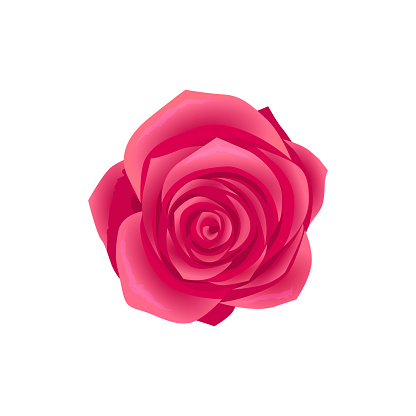 Beauty Flower Design Flat Isolated