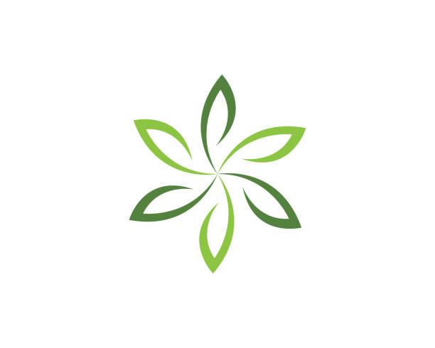 ilustraciones, imágenes clip art, dibujos animados e iconos de stock de flores de icono de vector de belleza diseño logotipo plantilla - medicina alternativa