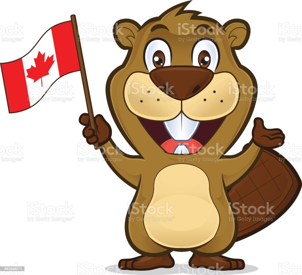 Beaver holding canadian flag vector art illustration