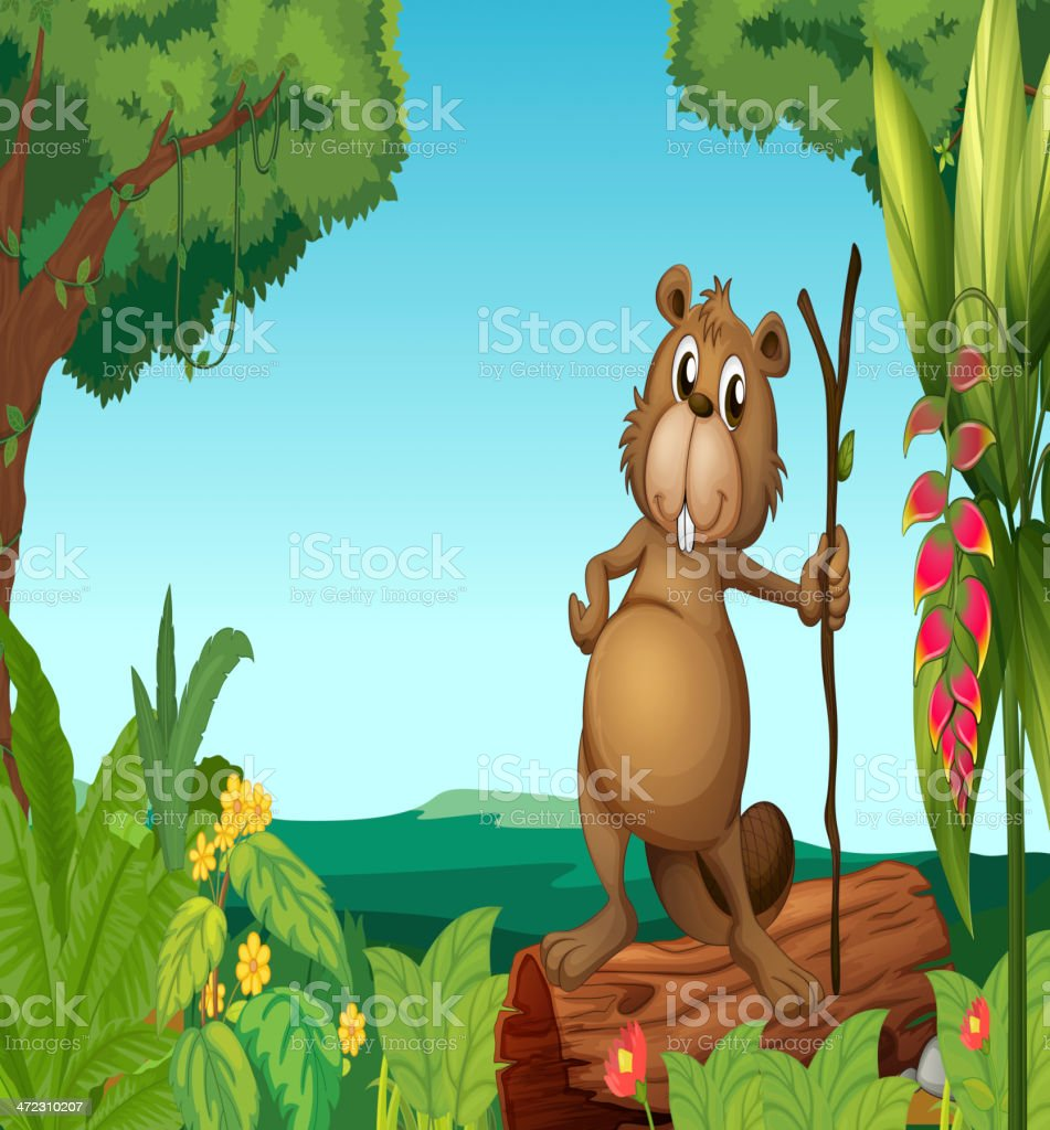 Beaver in the woods royalty-free beaver in the woods stock vector art & more images of acting