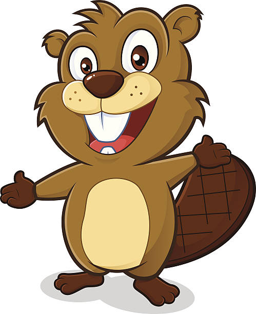 Beaver in welcoming gesture Clipart picture of a beaver cartoon character in welcoming gesture beaver stock illustrations