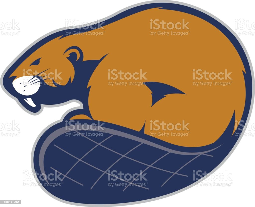 Beaver Mascotte - Illustration vectorielle
