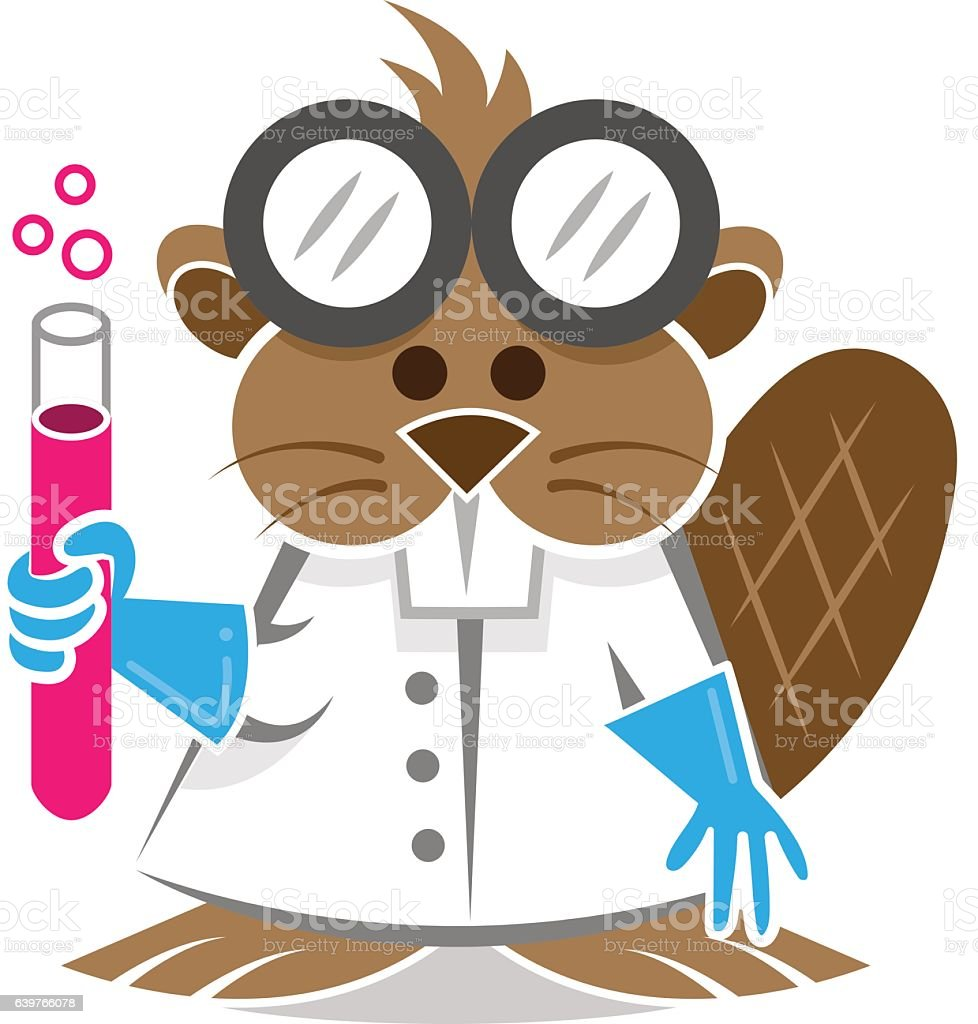 Beaver Scientist Stock Vector Art & More Images of Animal 639766078 ...
