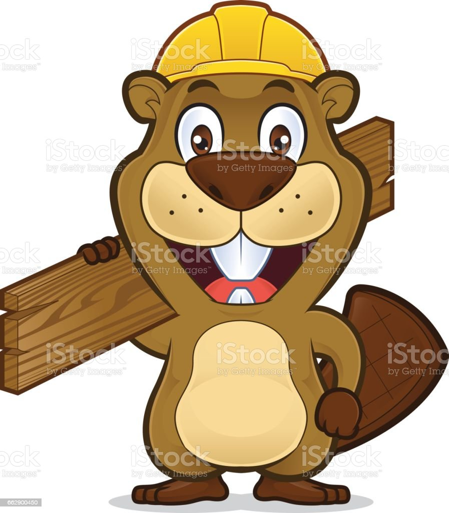 Beaver Wearing A Construction Hat And Holding A Plank Of Wood Stock ...