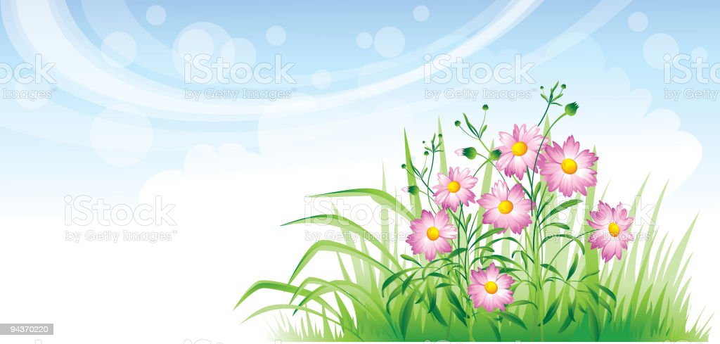 Bed of daisies royalty-free stock vector art